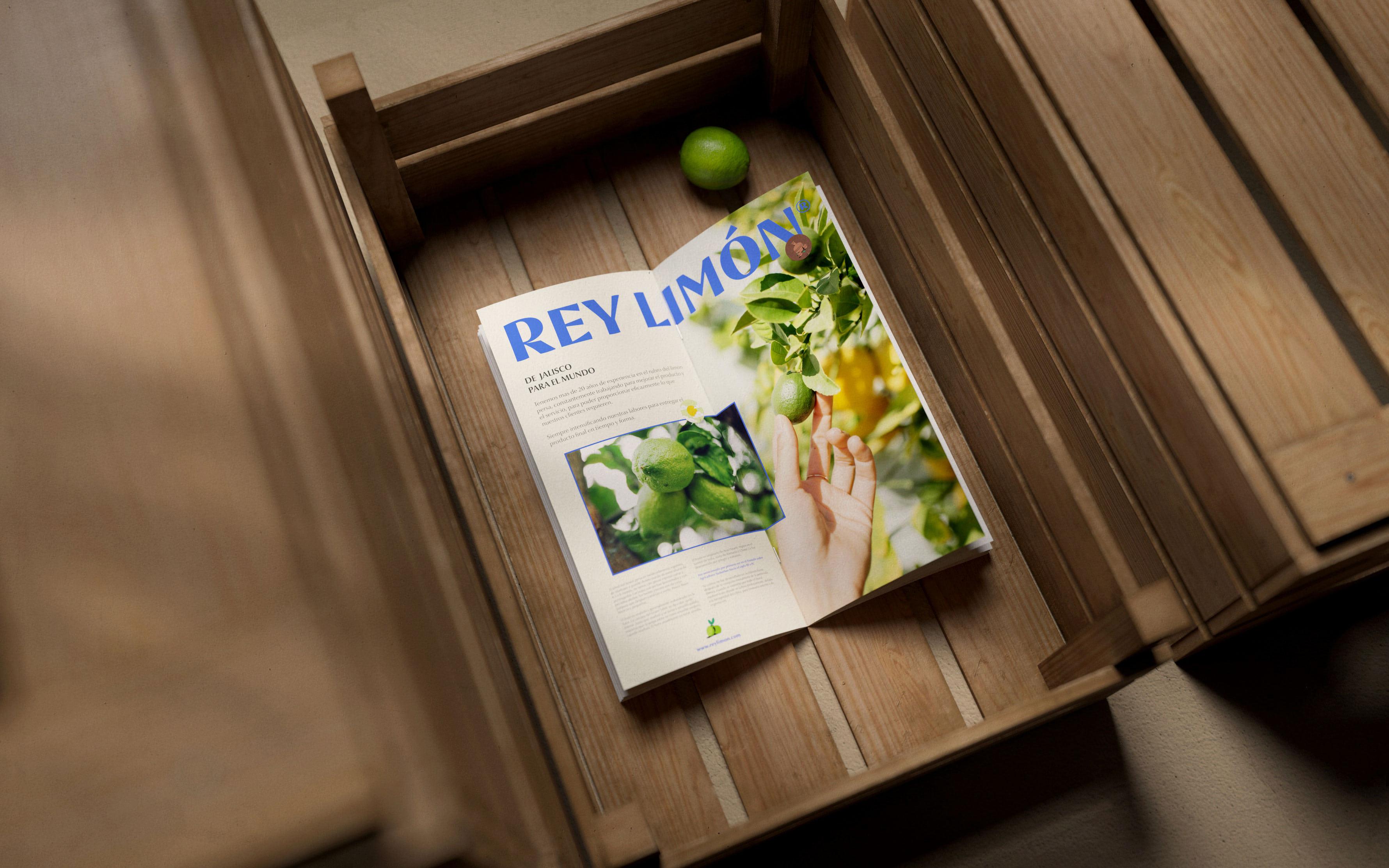 Rey-Limon-010